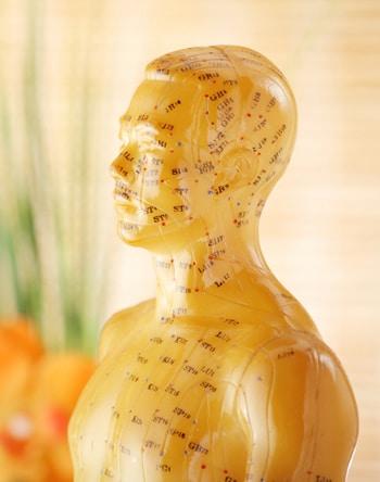 acupuncture_model2