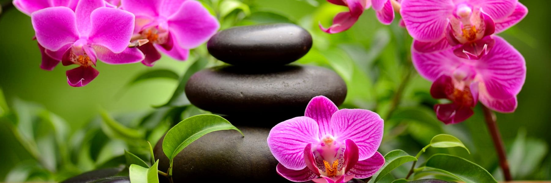 Stack of smooth stones surrounded by pink flowers