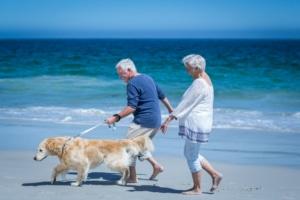 Neuropathy Solutions Couple Walking Dog